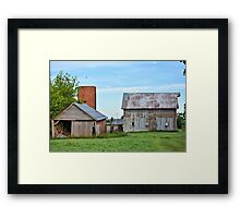Summer Abandonment Framed Print