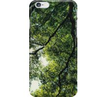 Through the Leaves iPhone Case/Skin