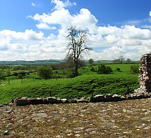 Cumbrian View by UPPERCASE