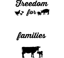 Freedom for ALL Families Photographic Print