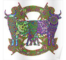 Rainbow Lined Bulls Poster