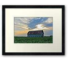 After Summer Rains Framed Print