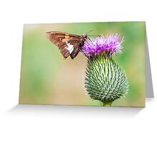 going horizontal on a vertical Greeting Card
