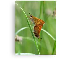 Skippers Canvas Print