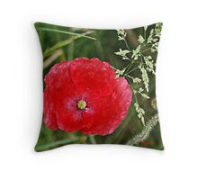 Tote bag -  In Flanders fields Throw Pillow