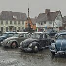 Bugs in the Rain, Lavenham by DaveTurner