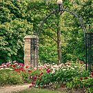 Gateway To The Park by jules572