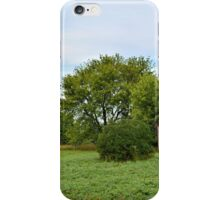 Summer Abandonment Panorama iPhone Case/Skin