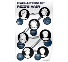 Evolution of Reid's Hair Poster