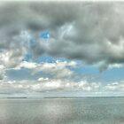 Pine Island Sound  by John  Kapusta