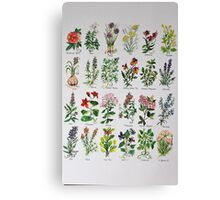 Herbal Alphabetical Watercolor Canvas Print