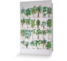 Palm tree watercolor alphabet Greeting Card