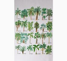Palm tree watercolor alphabet Unisex T-Shirt