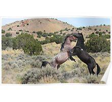 Mustang Waltz Poster