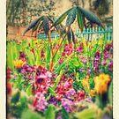 Mini Jungle by farmbrough