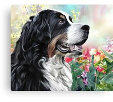 Bernese Mountain Dog Painting Canvas Print