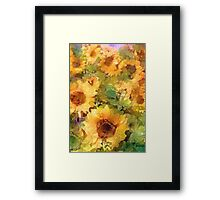 Sunflower 29 Framed Print