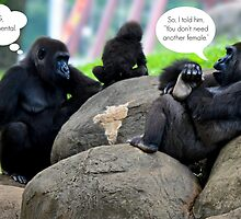 The Gossip at the Zoo by Scott Mitchell