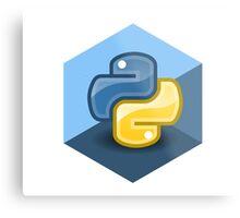 python programming language hexagonal sticker Metal Print