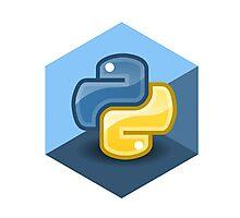 python programming language hexagonal sticker Photographic Print