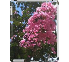 The Blossoms of Summer iPad Case/Skin