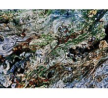 Timber Flow - camouflage Photographic Print