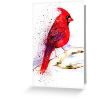 Red Cardinal Greeting Card