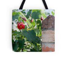 Winter Red Tote Bag