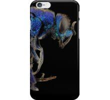 Blue Bee iPhone Case/Skin