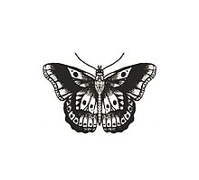 Harry Styles Butterfly Tattoo by Heather Waterhouse