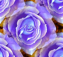 Lilac Rose by Artisimo