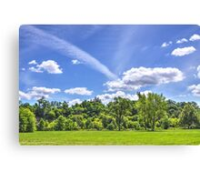 Raymore Canvas Print