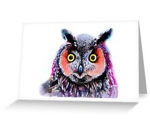 """Long eared owl"" Greeting Card"