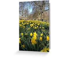 St James' Park Greeting Card