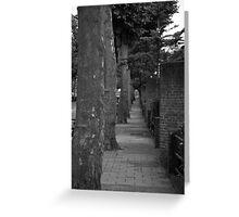 treeline Greeting Card