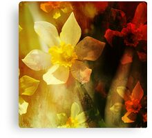 Daffie Dreams Abstract Canvas Print