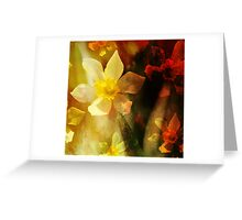 Daffie Dreams Abstract Greeting Card