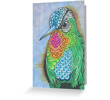 Rainbow Hummingbird Pen and Ink Illustration Greeting Card