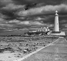 St Mary's Lighthouse Landscape by Chris Tait