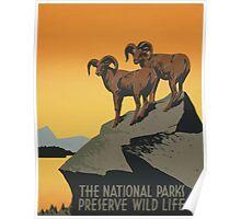 The National Parks Preserve Wild Life Vintage Travel Poster Poster