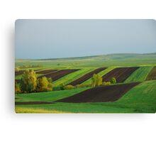 Green Yellow Black Field Canvas Print