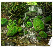 Moss Waterfall Poster