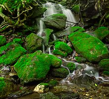 Mossy Falls by jswolfphoto