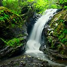 Campbell Falls Hidden by jswolfphoto