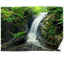 Campbell Falls Hidden Poster