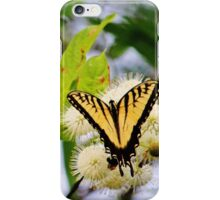 Butterfly On Buttonbush iPhone Case/Skin