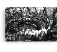 One Tree Forest  Canvas Print