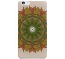 Autumn Maple iPhone Case/Skin