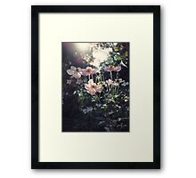 In a Country Garden Framed Print