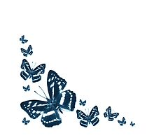 Butterfly in Blue by ©Josephine Caruana